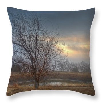 Willow Sunrise Throw Pillow by Mark Alder