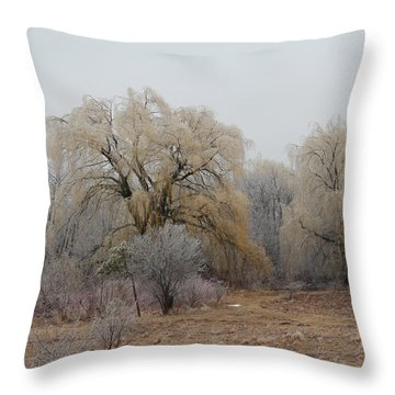 Willow Trees Iced Throw Pillow