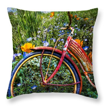 Wind At Your Back Throw Pillow