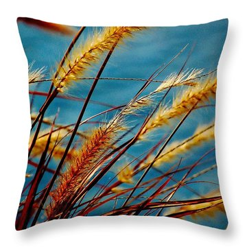 Throw Pillow featuring the photograph Wind Blown by Pamela Blizzard