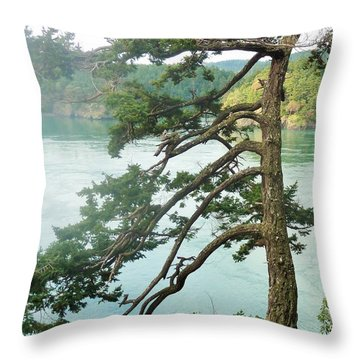 Wind-blown Tree At Deception Pass Throw Pillow