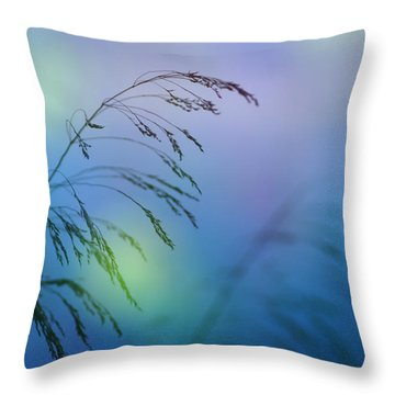 Wind Colors Throw Pillow by Guido Montanes Castillo