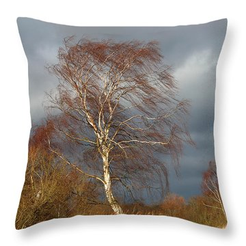 Wind Direction Throw Pillow