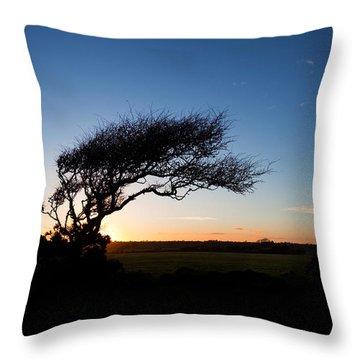 Wind Sculptured Hawthorn Tree, The Throw Pillow