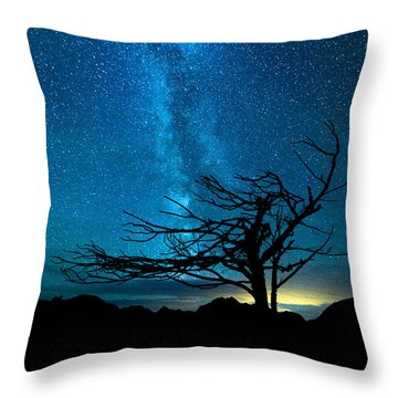 Throw Pillow featuring the photograph Chance by Dustin  LeFevre