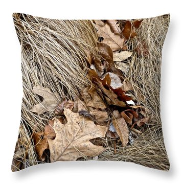 Wind Swept Throw Pillow by Tim Good