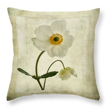 Windflowers Throw Pillow by John Edwards
