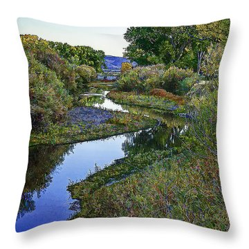 Winding Autumn Color Throw Pillow