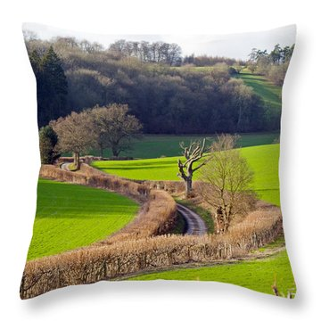 Winding Country Lane Throw Pillow