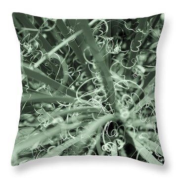 Winding Throw Pillow