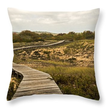 Winding Path Over The Marshes Throw Pillow