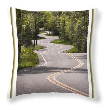 Winding Road Door County Throw Pillow
