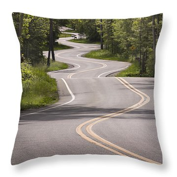 Winding Road Door County Throw Pillow