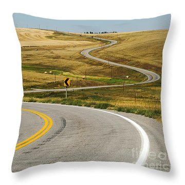 Throw Pillow featuring the photograph Winding Road by Sue Smith