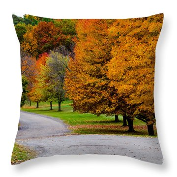 Throw Pillow featuring the photograph Winding Road by William Norton