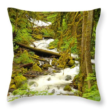 Winding Through The Forest Throw Pillow by Jeff Swan