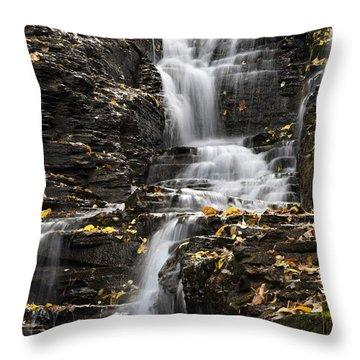 Winding Waterfall Throw Pillow