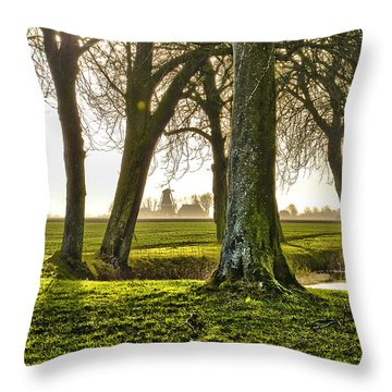 Windmill And Trees In Groningen Throw Pillow by Frans Blok