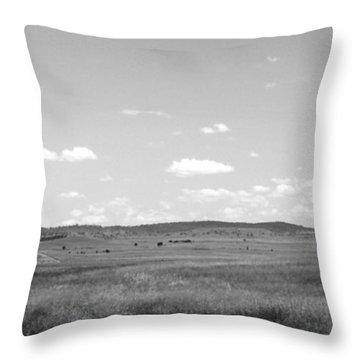 Windmill On The Plains - Black And White Throw Pillow by Kaleidoscopik Photography