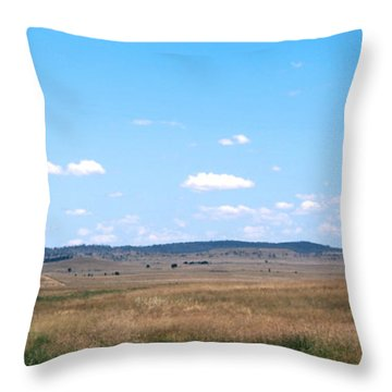 Windmill On The Plains Throw Pillow by Kaleidoscopik Photography