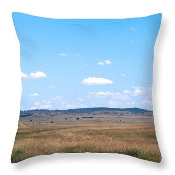 Windmill On The Plains Throw Pillow by Kaleidoscopik Photography