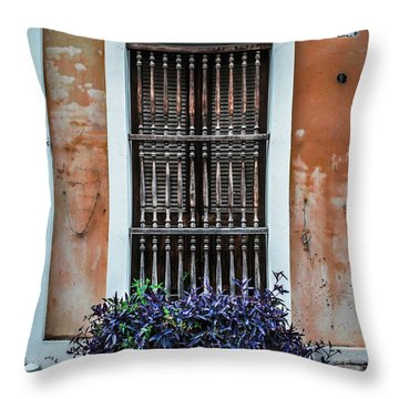 Window 53 Throw Pillow