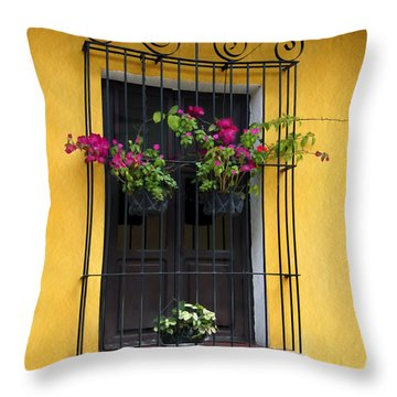Window At Old Antigua Guatemala Throw Pillow