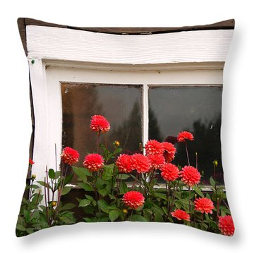 Throw Pillow featuring the photograph Window Box Delight by Jordan Blackstone