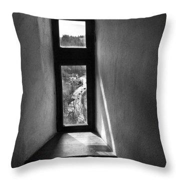 Window Dracula's Castle Interior204 Throw Pillow by Dorin Stef