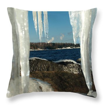 Throw Pillow featuring the photograph Window Into Minnesota by James Peterson
