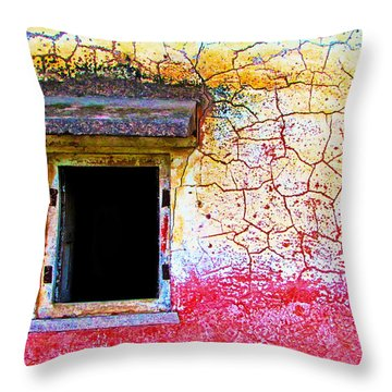 Window Of Opportunity Throw Pillow