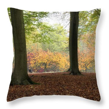 Throw Pillow featuring the photograph Window Through The Trees by Shirley Mitchell