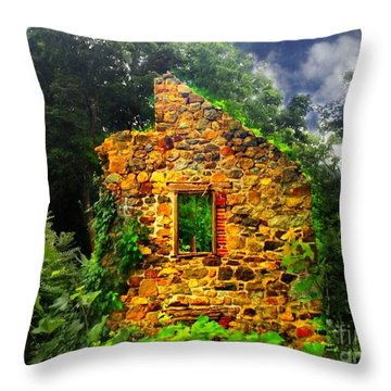 Window To Her Soul Throw Pillow