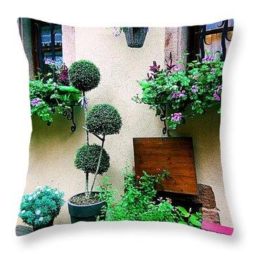 Windows And Doors 18 Throw Pillow