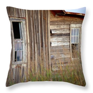 Throw Pillow featuring the photograph Windows On The World by Gordon Elwell