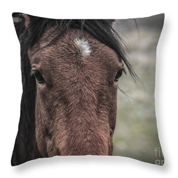 Throw Pillow featuring the photograph Windows To The Soul by Mitch Shindelbower