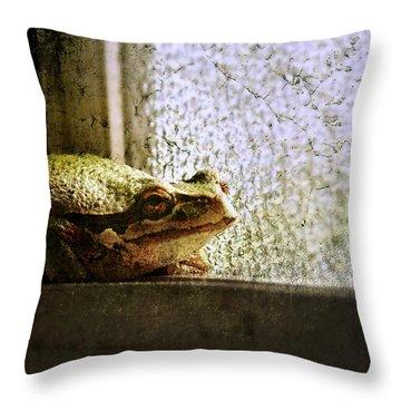 Windowsill Visitor Throw Pillow