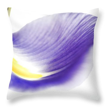 Windswept Throw Pillow by Deb Halloran