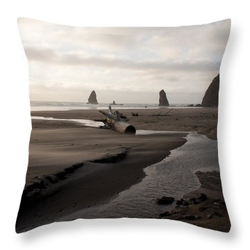 Windswept Throw Pillow by John Daly