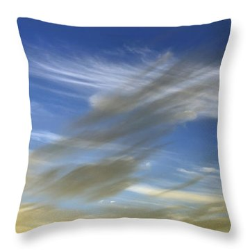 Windswept Throw Pillow by Kaye Menner