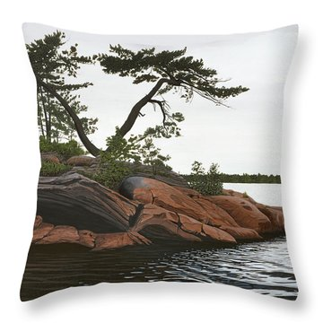 Lake Huron Throw Pillows