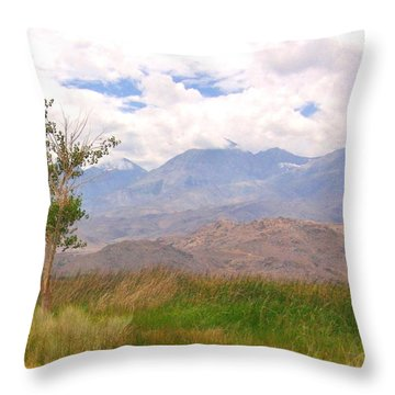Throw Pillow featuring the photograph Windswept by Marilyn Diaz