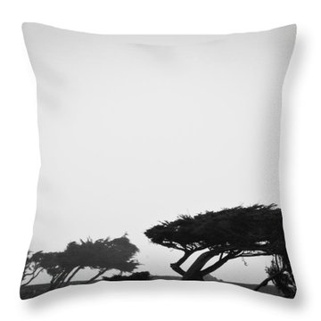 Windswept Shoreline Throw Pillow