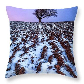 Windswept Tree Scotland Throw Pillow by John Farnan