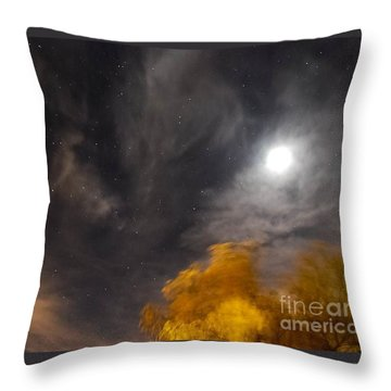 Windy Night Throw Pillow by Angela J Wright