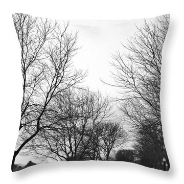 Windy Road 2 Throw Pillow