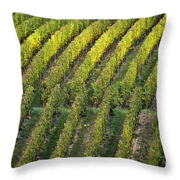 Wine Acreage In Germany Throw Pillow by Heiko Koehrer-Wagner