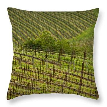 Wine Design Throw Pillow by Jean Noren