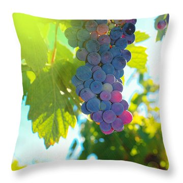 Wine Grapes  Throw Pillow by Jeff Swan