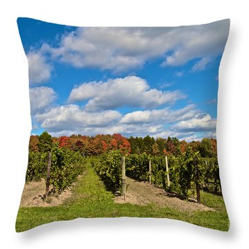 Wine In Waiting Throw Pillow by William Norton